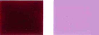 Pigment-tund-19-reng